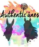 Authentic'Anes